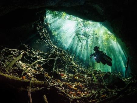 Terry Steeley Taj Mahal Cenote