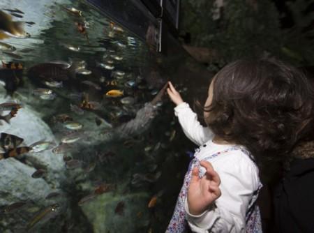 Museos, rutas turísticas, monumentos... Los niños también los disfrutan