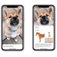 Google Lens en iPhone y iPad más fácil que nunca con su integración en la app de Google