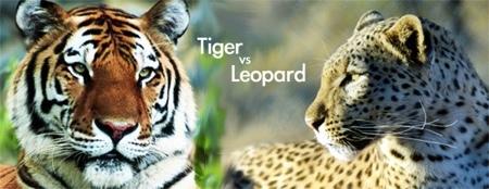 Pruebas de rendimiento de Tiger y Leopard en el mismo Mac, por el GUM Córdoba
