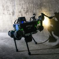 ANYmal, el robot cuadrúpedo que está explorando las alcantarillas suizas