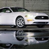 Ford Mustang Ice White Edition, una versión limitada a 1,500 unidades