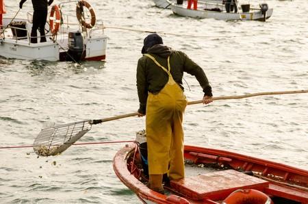Pesca De Berberechos Min