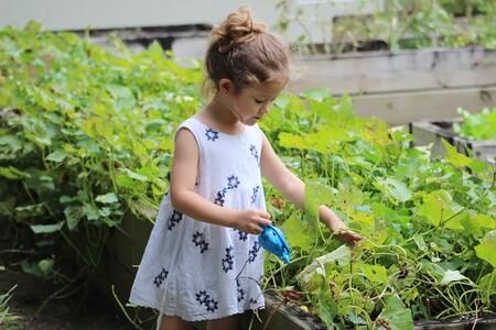 hacer jardinería
