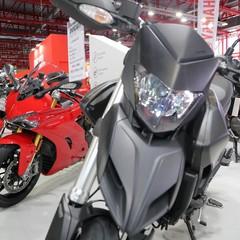 Foto 117 de 158 de la galería motomadrid-2019-1 en Motorpasion Moto