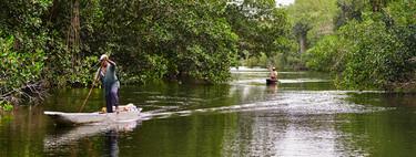 Apple se asocia con comunidades colombianas para proteger los manglares del Caribe
