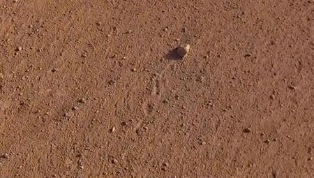 Esta roca rodante de Marte ha sido bautizada en honor a los Rolling Stones