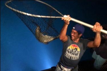 De tenistas va la cosa: del pez de Fernando Verdasco al cumpleaños de Feliciano López