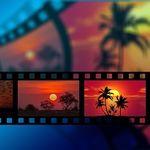 Potenciar la transformación digital de las pymes gracias a The Video Network