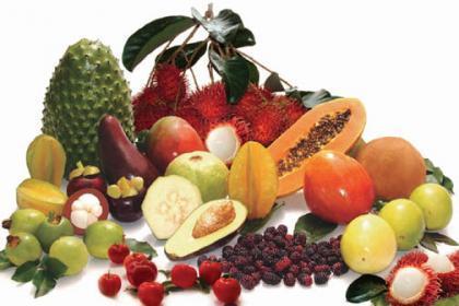 Globalización, localización, ecología y consumo de alimentos