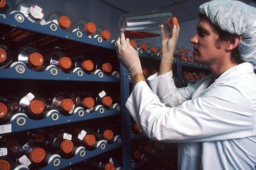 La implantación de todo tratamiento tiene barreras económicas, sociales e ideológicas, ¿a qué retos se enfrenta CRISPR?