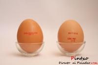 Prueba de producto: Huevos ecológicos Vs Huevos estándar