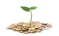 ¿Qué es el capital semilla?
