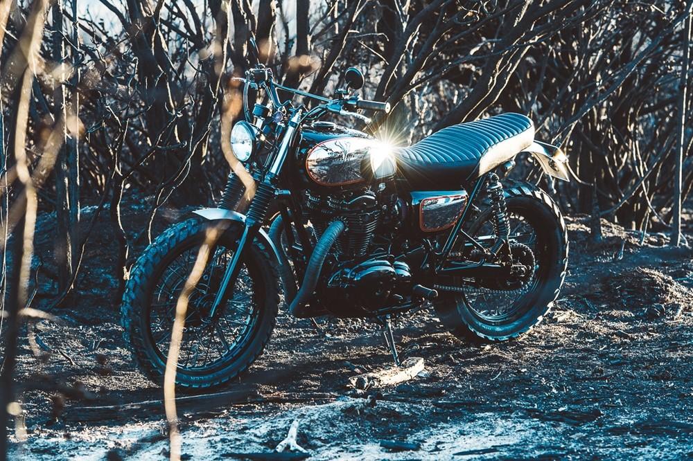 Foto de Kawasaki W800 Deus Ex Machina (96/99)