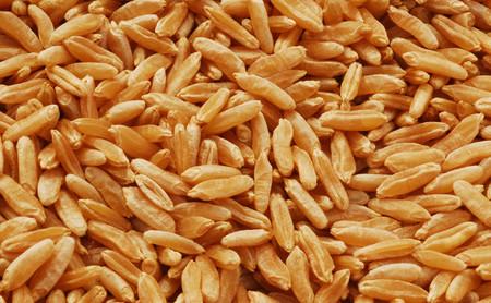Kamut: propiedades, beneficios y su uso en la cocina