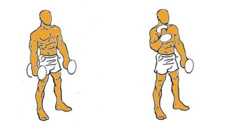 Musculación para corredores (III): curl de bíceps alterno