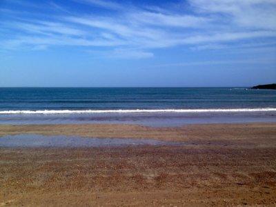 Lo que hacen las colillas que tiras en la playa en el medio marino