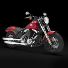 Foto 5 de 9 de la galería harley-davidson-fls-softail-slim en Motorpasion Moto