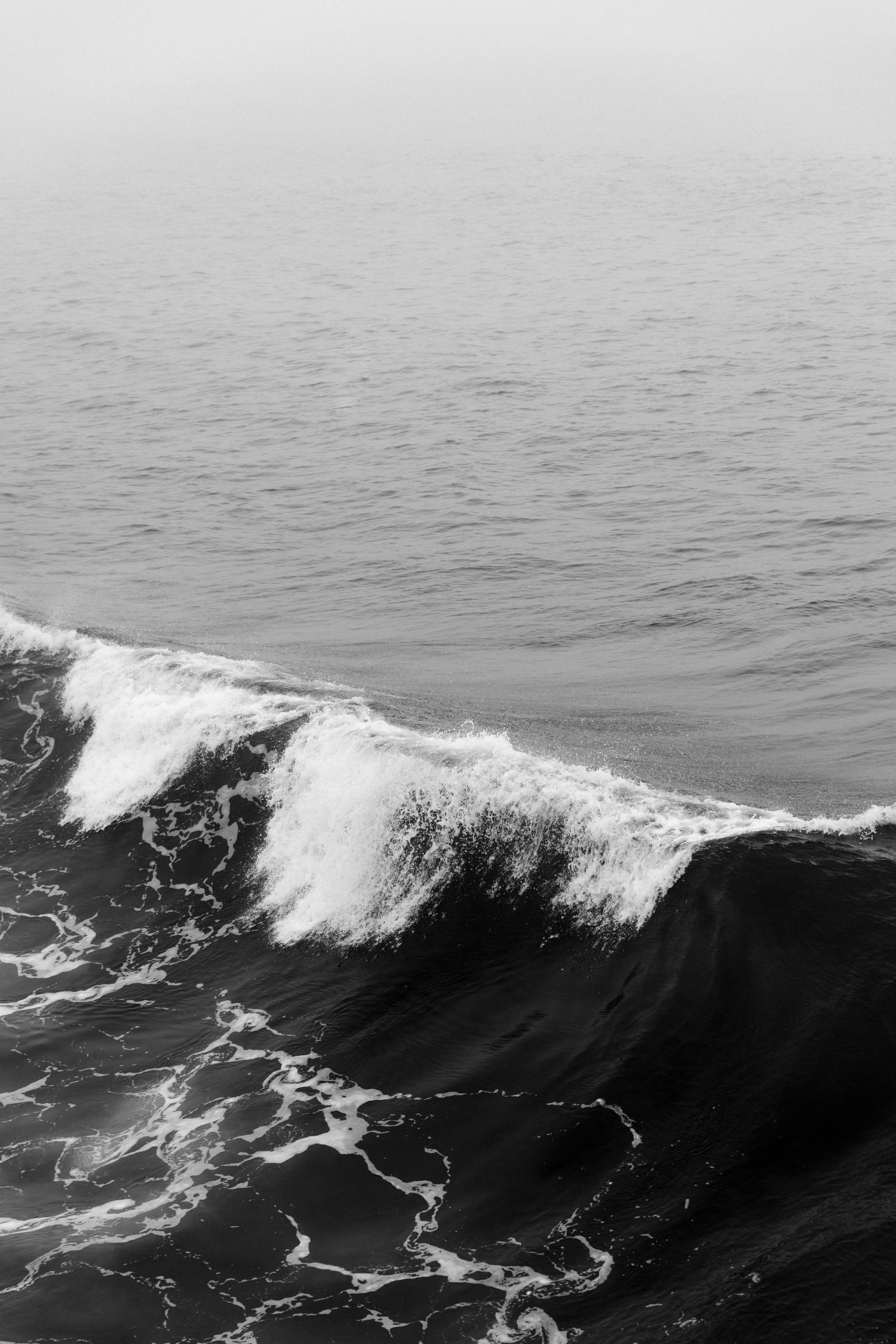 Fondos del mar