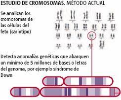Nuevo biochip de ADN para detectar posibles anomalías en los fetos