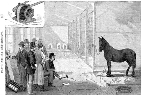Electrocutar elefantes para ganar una guerra o cómo todo valía en la lucha entre Tesla y Edison