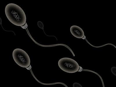 Las nuevas pruebas de fertilidad masculina caseras resultan ser bastante eficaces