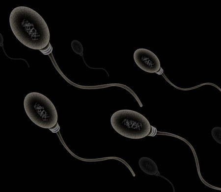 Chile masculina de costo examen fertilidad