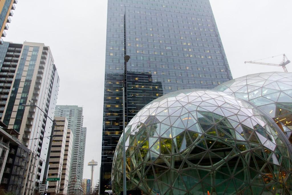 The Spheres Amazon 9