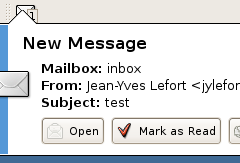 Mail Notification