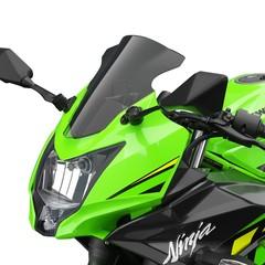 Foto 14 de 60 de la galería kawsaki-ninja-125-2019 en Motorpasion Moto