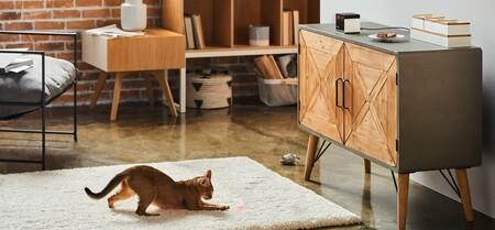 Tecnología para mascotas: 19 dispositivos para alimentación, juego y vigilancia para tu perro o gato