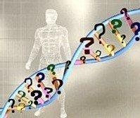 Combinación de genética y nutrición, la nutrigenómica