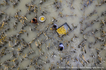 Flood Water Has Damaged Crops Azim Khan Ronnie Aerial Photography Awards
