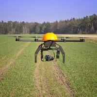 Estos drones aseguran que son capaces de plantar 100.000 árboles en una hora: más rápido y más barato que una persona