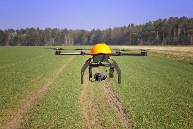Drones Trees