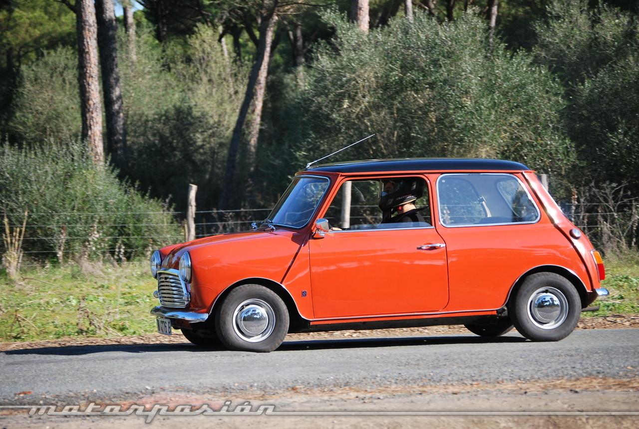 Foto de Authi Mini 850 L (prueba) (38/62)