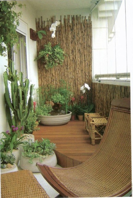 Pared Bambu Plantas