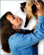 La toxoplasmosis, el peligro de un gato si estás embarazada