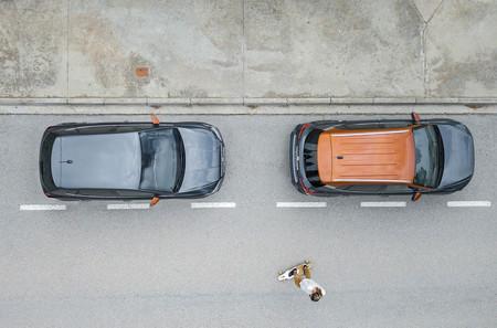 SEAT tendrá un nuevo servicio de movilidad para finales de año