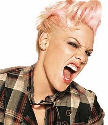 ¿Pink podría ser bisexual?