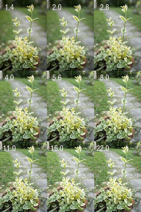 Prueba diafragmas Samyang 24mm 1.4
