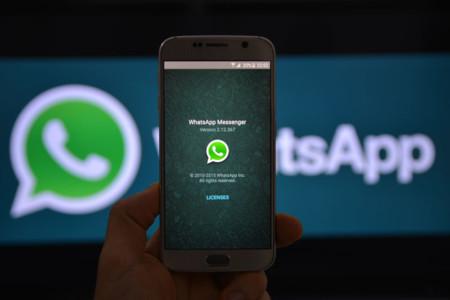 Próximamente podrás enviar GIFs de gatitos a tus contactos de WhatsApp