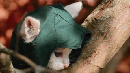Assassin's Creed Unity recreado con gatos gracias a fan