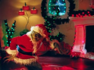 Cinco motivos por los que en Navidad me invade el espíritu de El Grinch