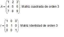 Matrices cuadrada e identidad