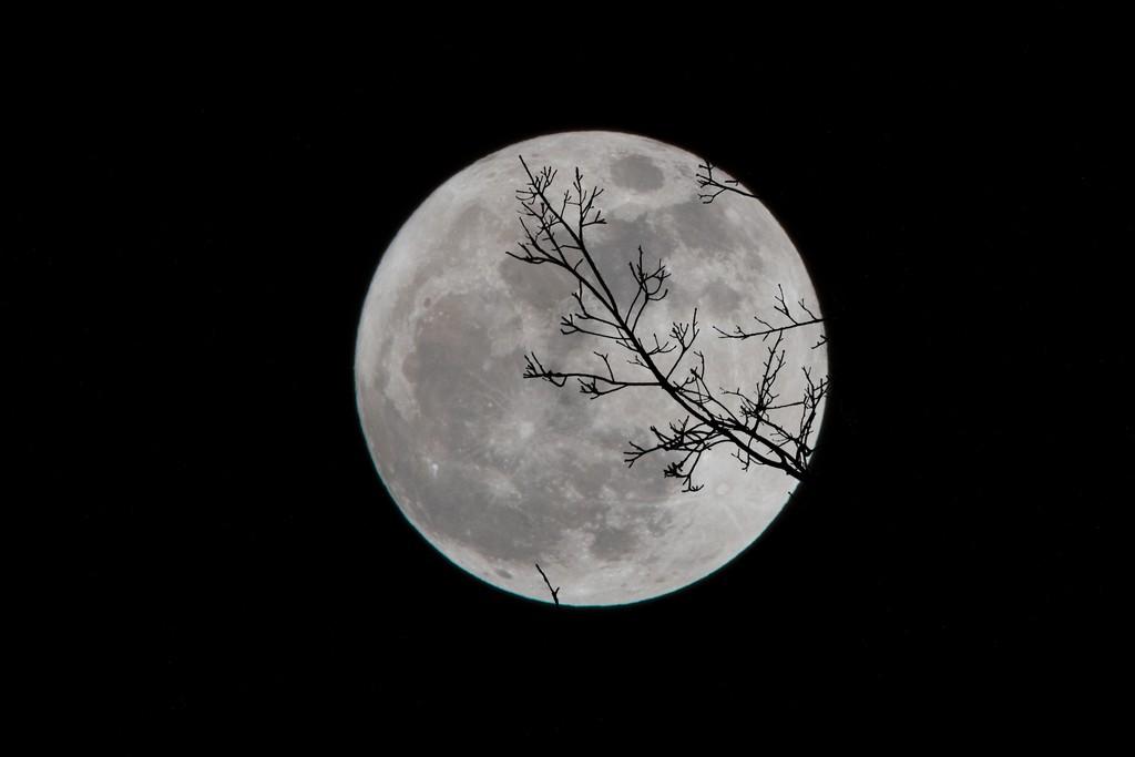 La Luna sigue siendo una amante cruel: por qué es tan difícil alunizar allá arriba sesenta años después de hacerlo por primera vez