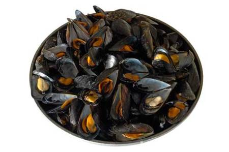 Mejillones, un tesoro del mar