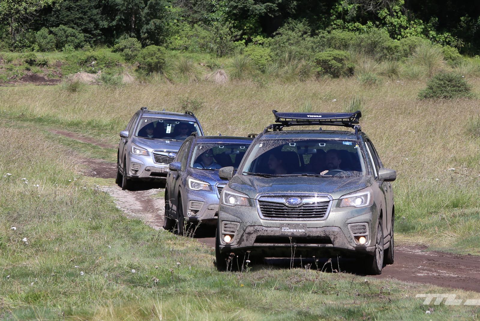 Foto de Subaru Forester 2019 (lanzamiento en México) (14/25)