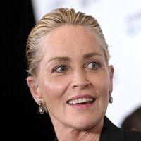 """Sharon Stone critica con dureza la tendencia a idealizar a Meryl Streep: """"Hay otras actrices con tanto talento como ella"""""""