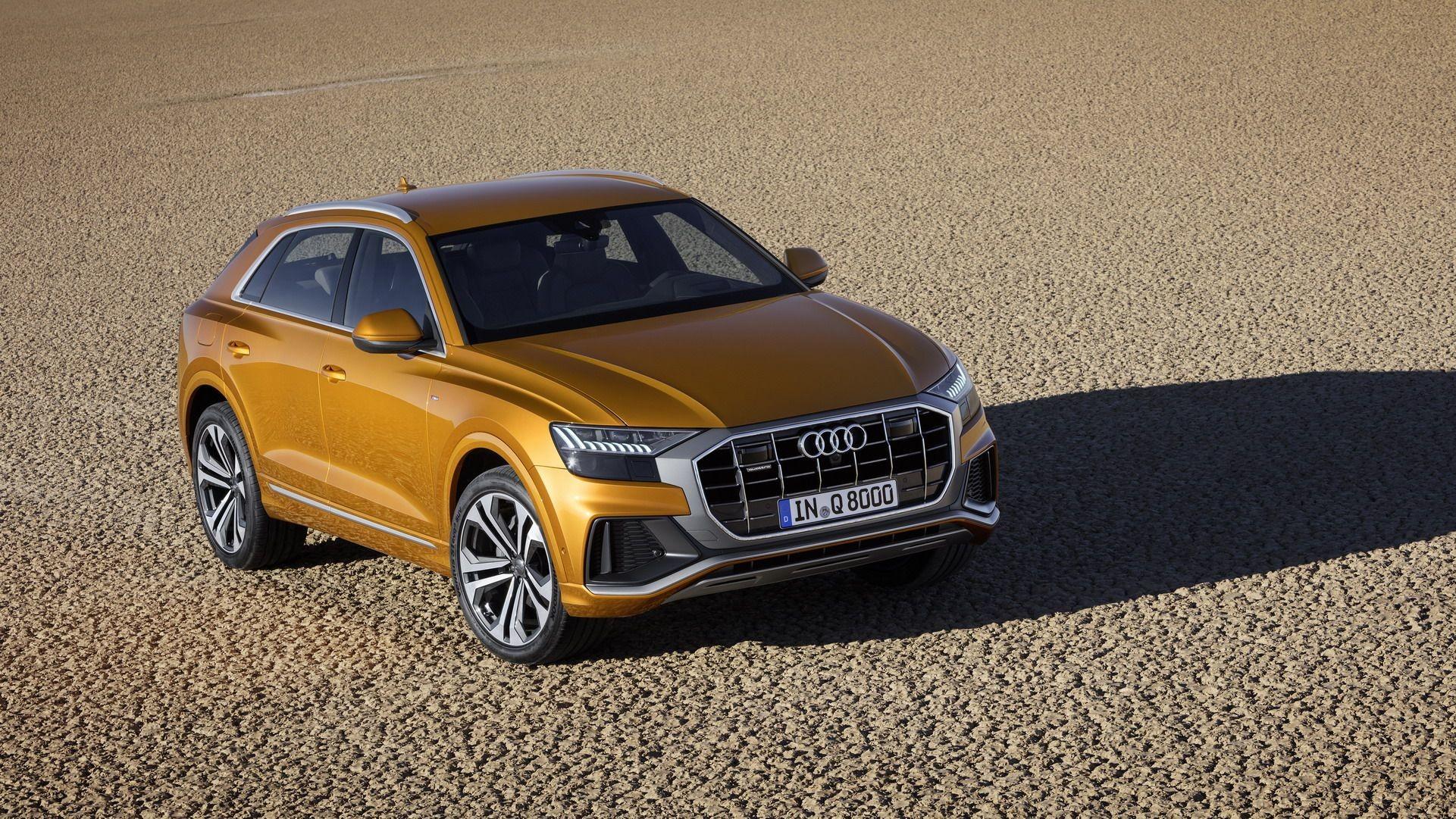 Foto de Audi Q8 (6/14)